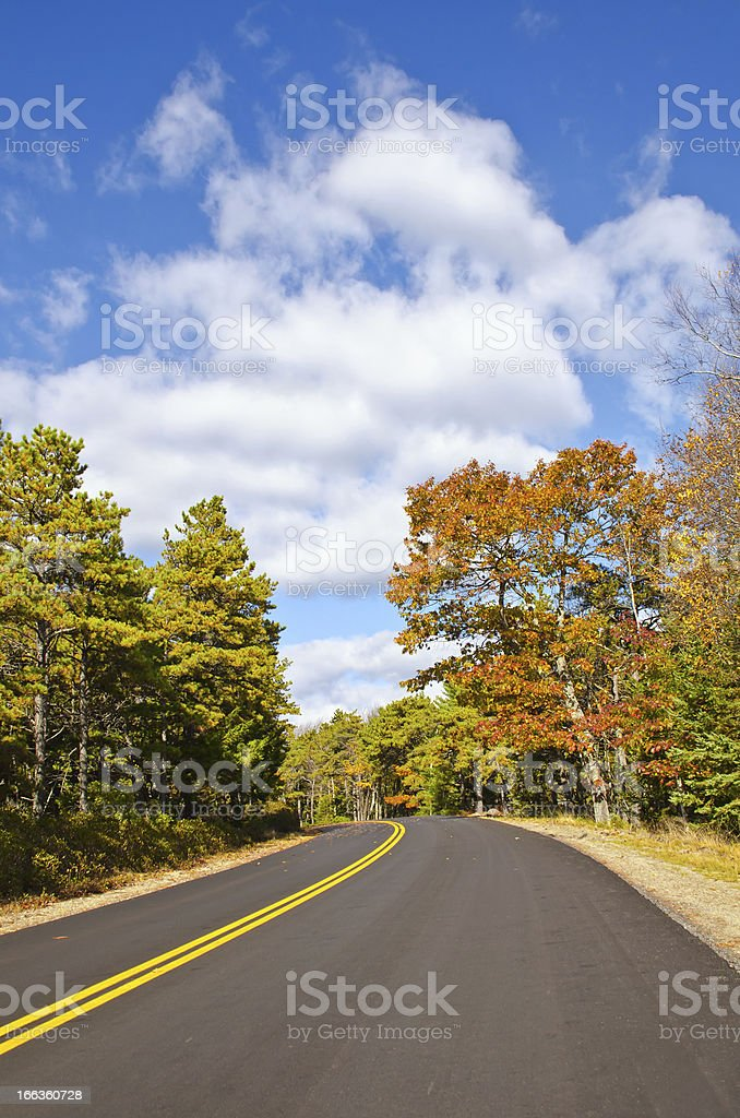 Winding road in the autumn royalty-free stock photo