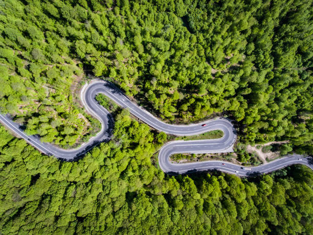 Winding road in the forest. Transylvania, Romania, Europe. Cars passing on road. stock photo