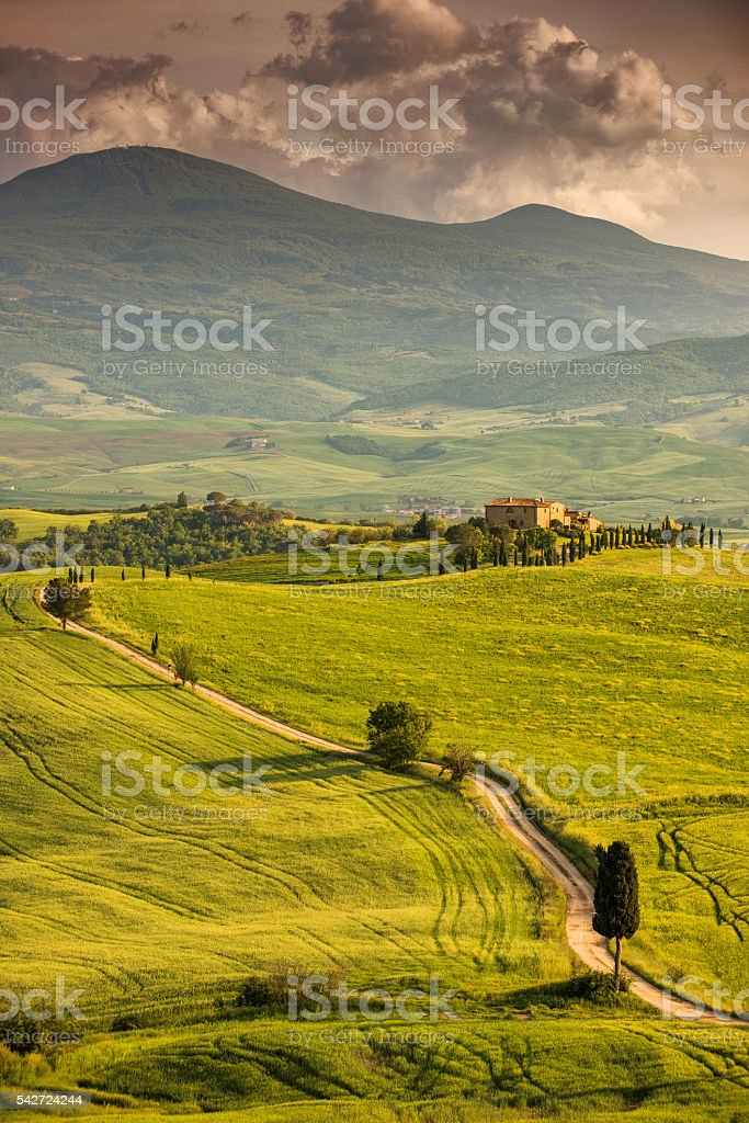 Winding road in Tuscany stock photo