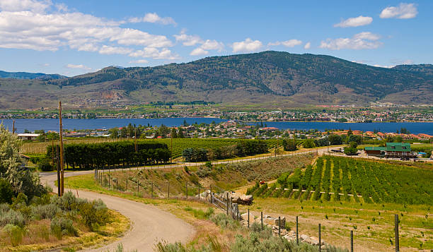 Winding road of Osoyoos Wine Valley stock photo