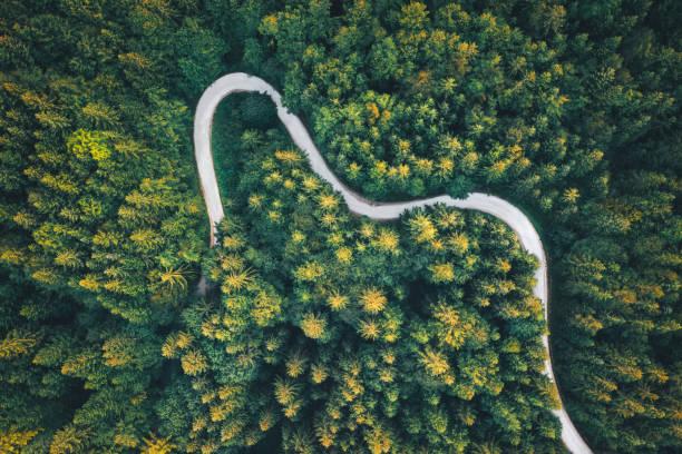 Winding Road – Foto