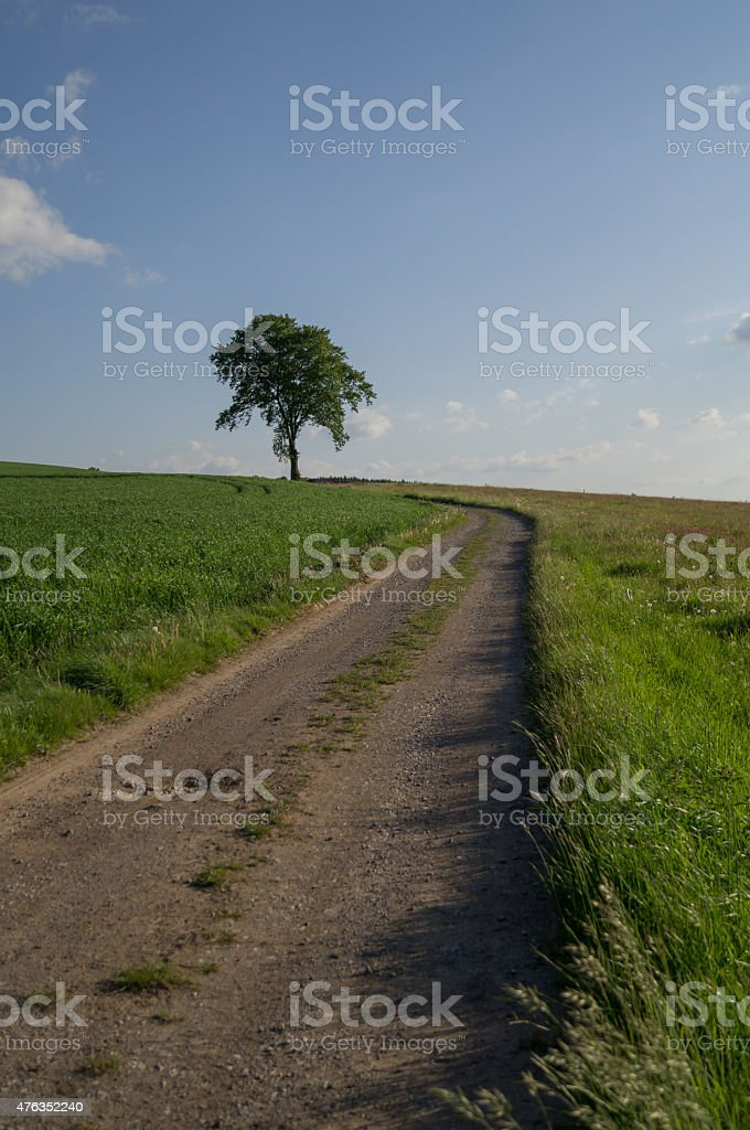 winding road stock photo