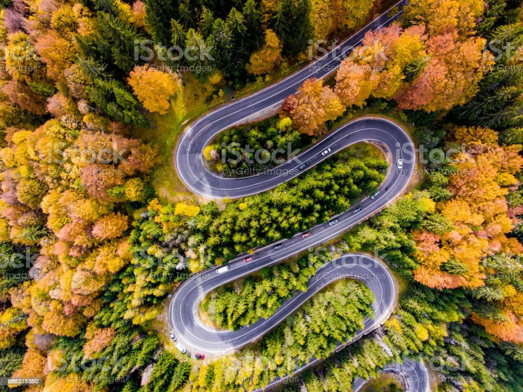 Winding Road surrounded by a colourfull trees in the forest stock photo