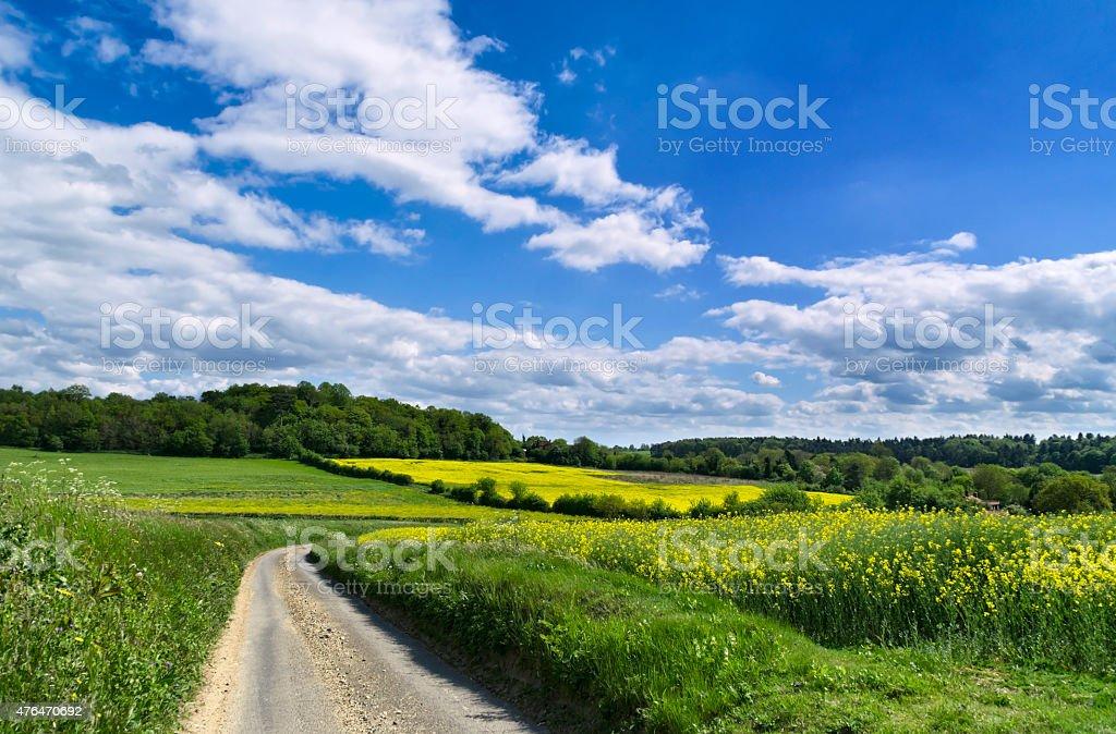 Winding road through fields at Coddenham, Suffolk stock photo
