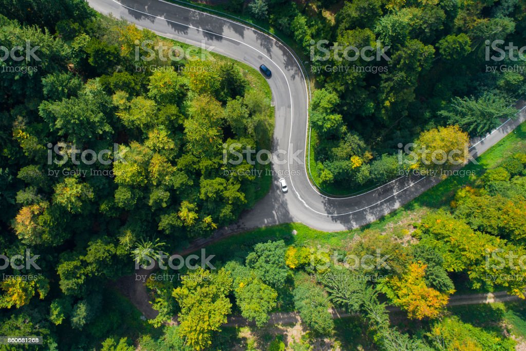 Winding road through the forest stock photo