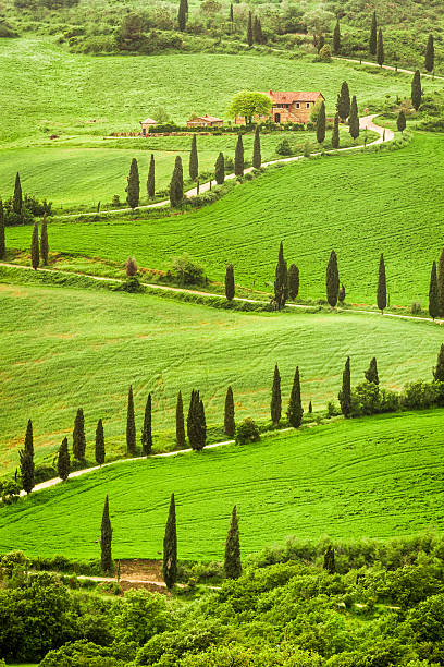 Winding road to agritourism in Italy on the hill, Tuscany Winding road to agritourism in Italy on the hill, Tuscany. pienza stock pictures, royalty-free photos & images