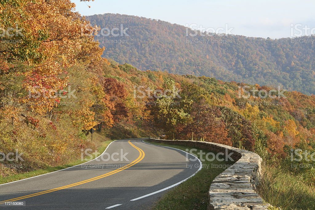 Winding rural road with trees in autumn stock photo