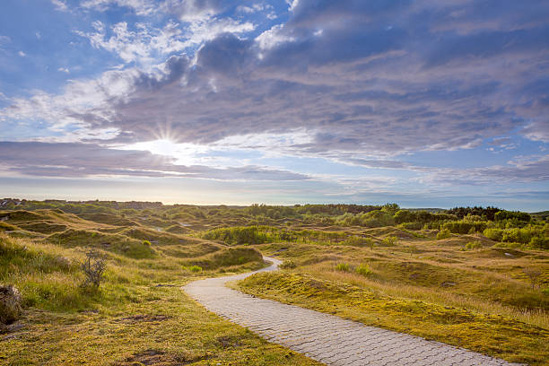Winding Trail Dune Landscape Trail winding through Dunes on the island of Baltrum,just a trail for walking, for being in that landscape lower saxony stock pictures, royalty-free photos & images