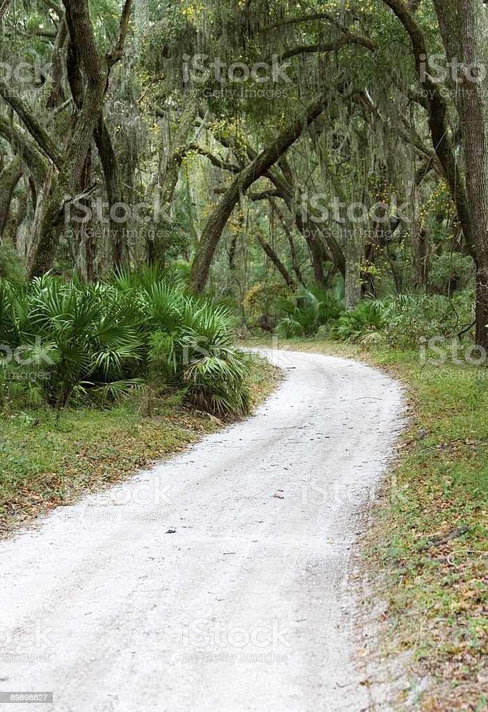 WInding white sand Road royalty-free stock photo