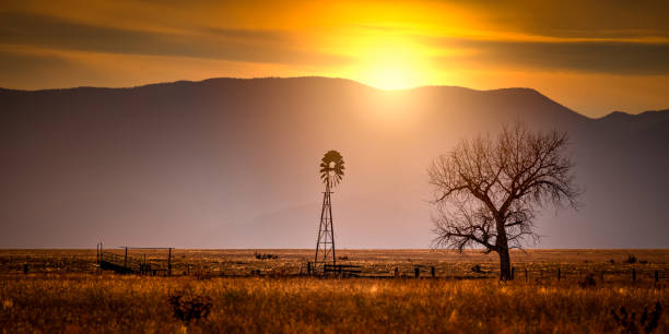 windmill at sunset on a farm - great plains stock photos and pictures