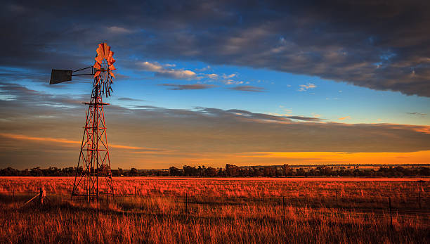 windmill at sunset, outback australia - bush stockfoto's en -beelden