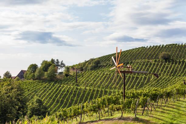 Windmühle genannt Klapotetz im Weinberg entlang der Route Süd steirischen Rebsorte in Österreich – Foto