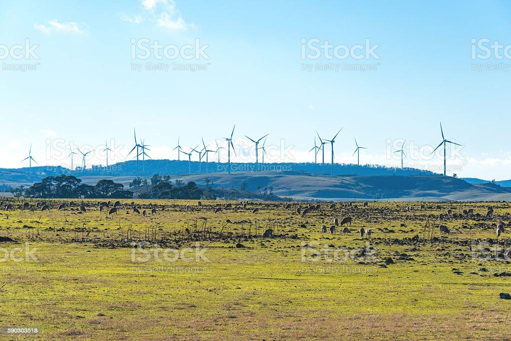 Windmill electricity turbine – Foto