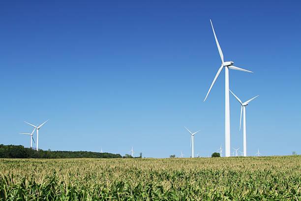 Windmill farm, corn field. Wind Turbine Electricity Power Generator. Michigan. stock photo