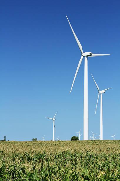 Windmill farm,corn field. Wind Turbine Electricity Power Generator. Michigan. stock photo