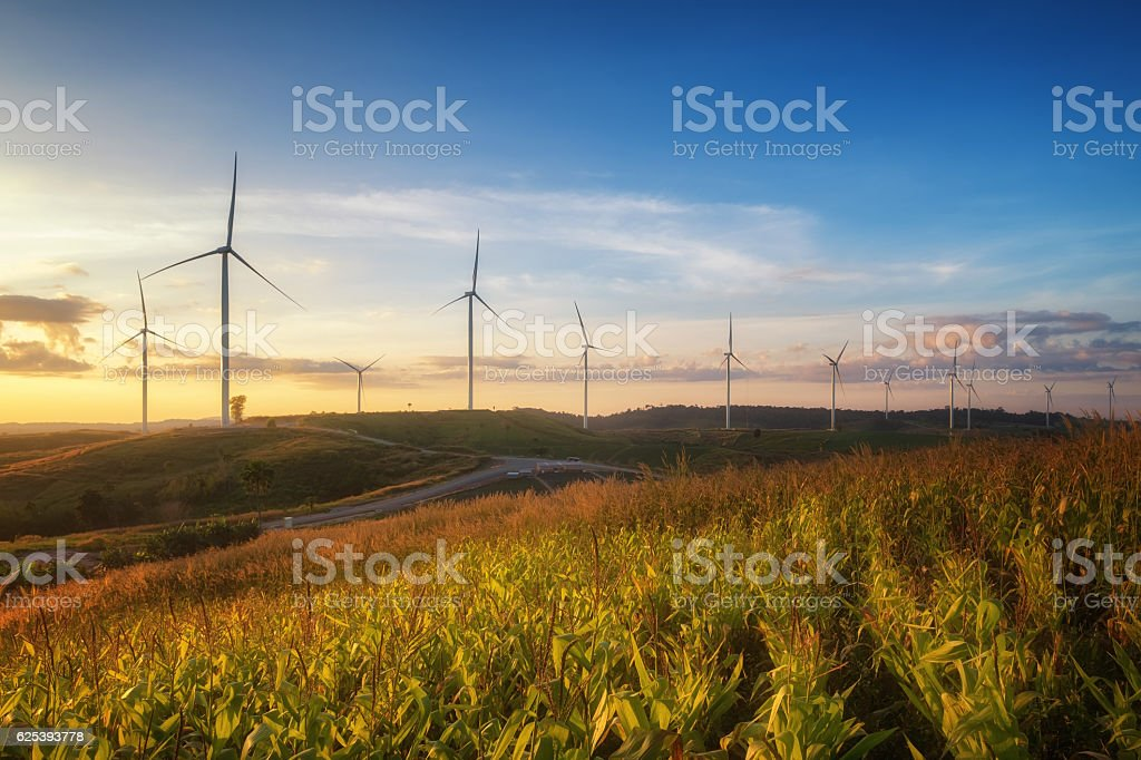 Windmill field stock photo