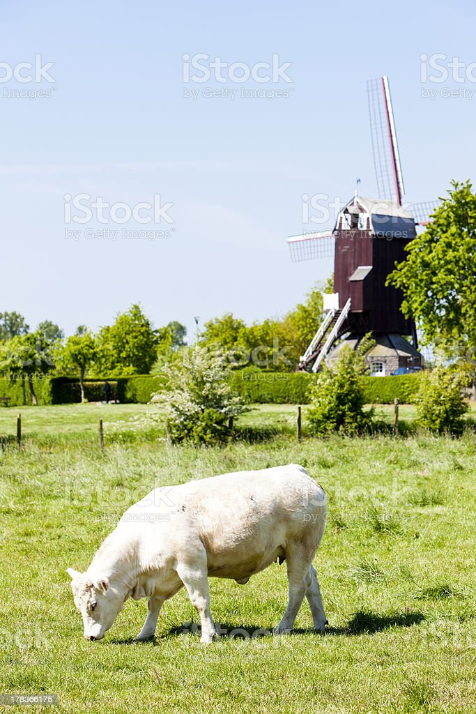 windmill, France royalty-free stock photo