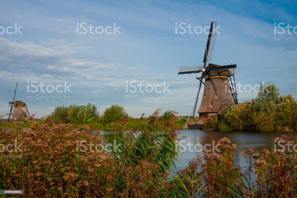Windmill in Dutch water autumn landscape, Kinderdijk, The Netherlands, Unesco, against blue cloudy sky stock photo