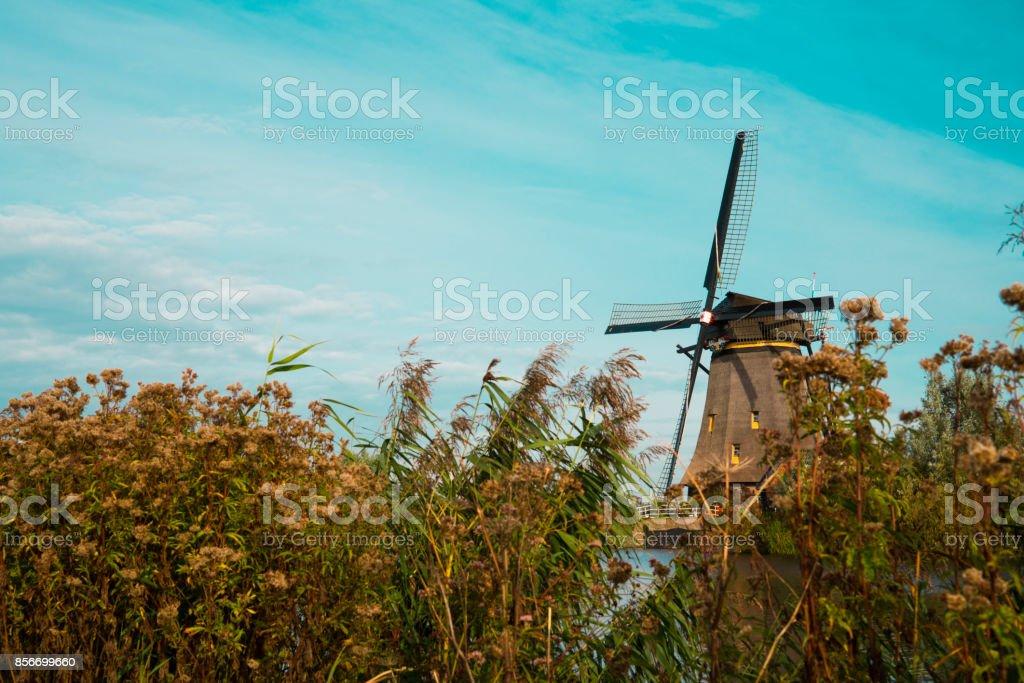 Windmill in Dutch water fall landscape, Kinderdijk, The Netherlands, Unesco, against blue cloudy sky stock photo