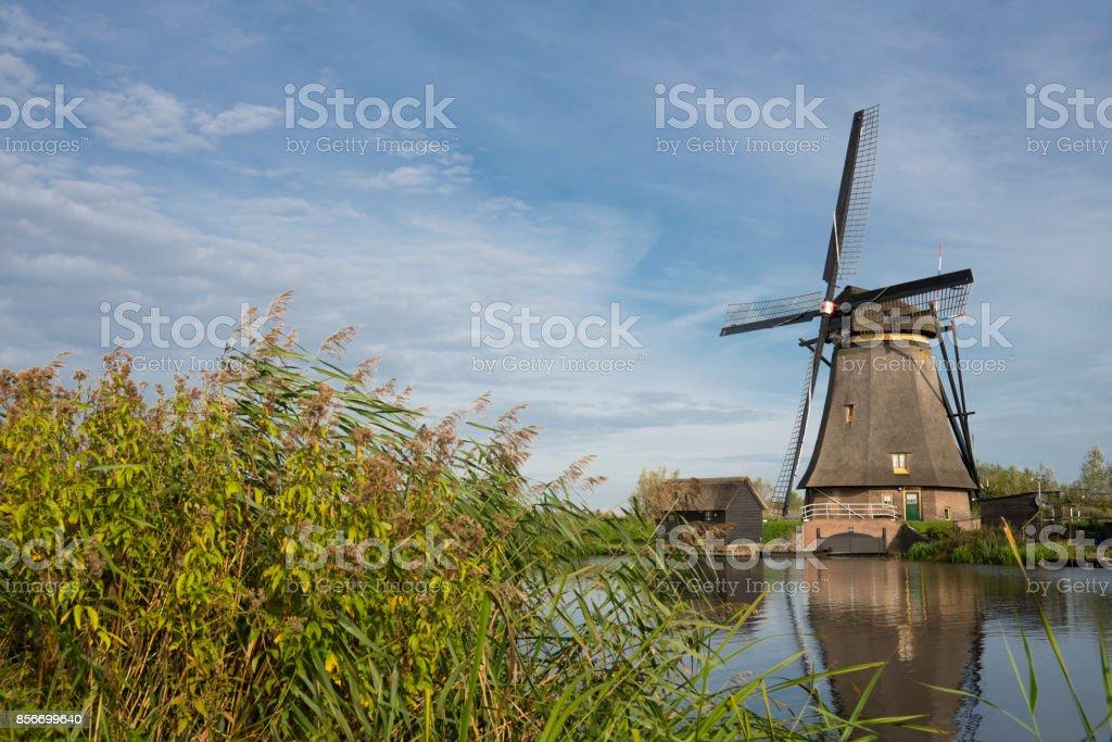 Windmill in Dutch water landscape, Kinderdijk, The Netherlands, against blue sky stock photo