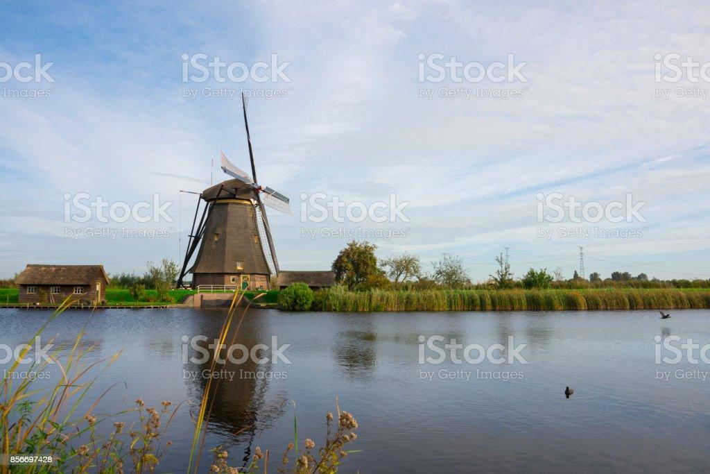 Windmill in Dutch water landscape, Kinderdijk, The Netherlands stock photo