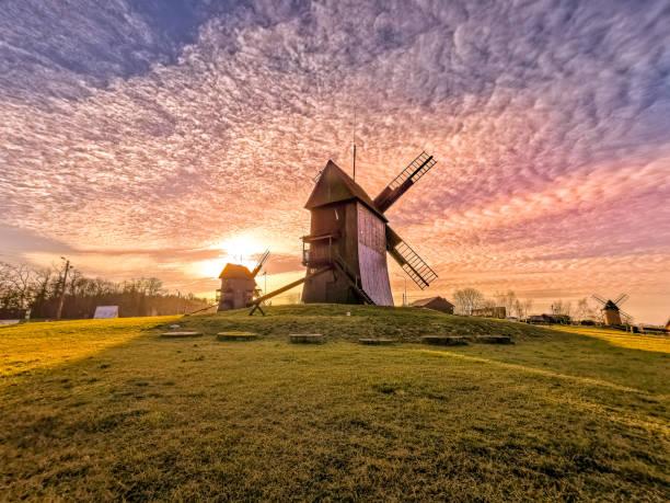 Windmill in Osieczna – zdjęcie