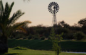 windmill in the field at a lake at sunset in south africa