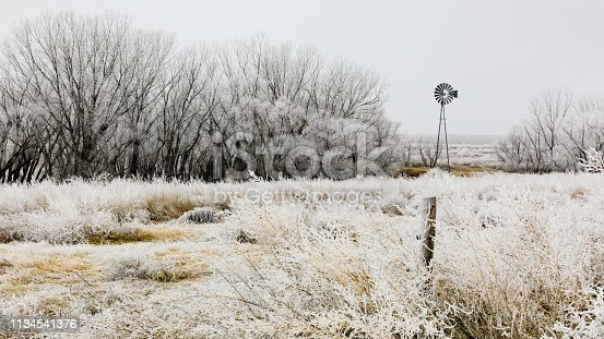 Frosted grass sways in the wind as the bare trees glisten white with the frozen air.  A windmill stands still. Western Kansas, February 2019