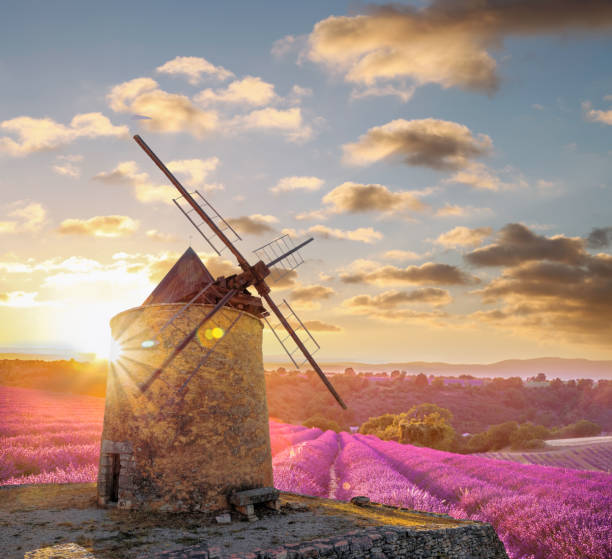 Windmill with levander field against colorful sunset in Provence, France stock photo