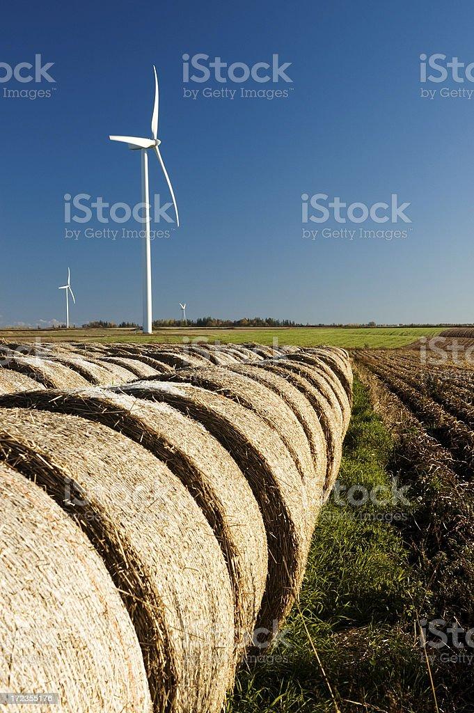 Windmills & Farmland royalty-free stock photo