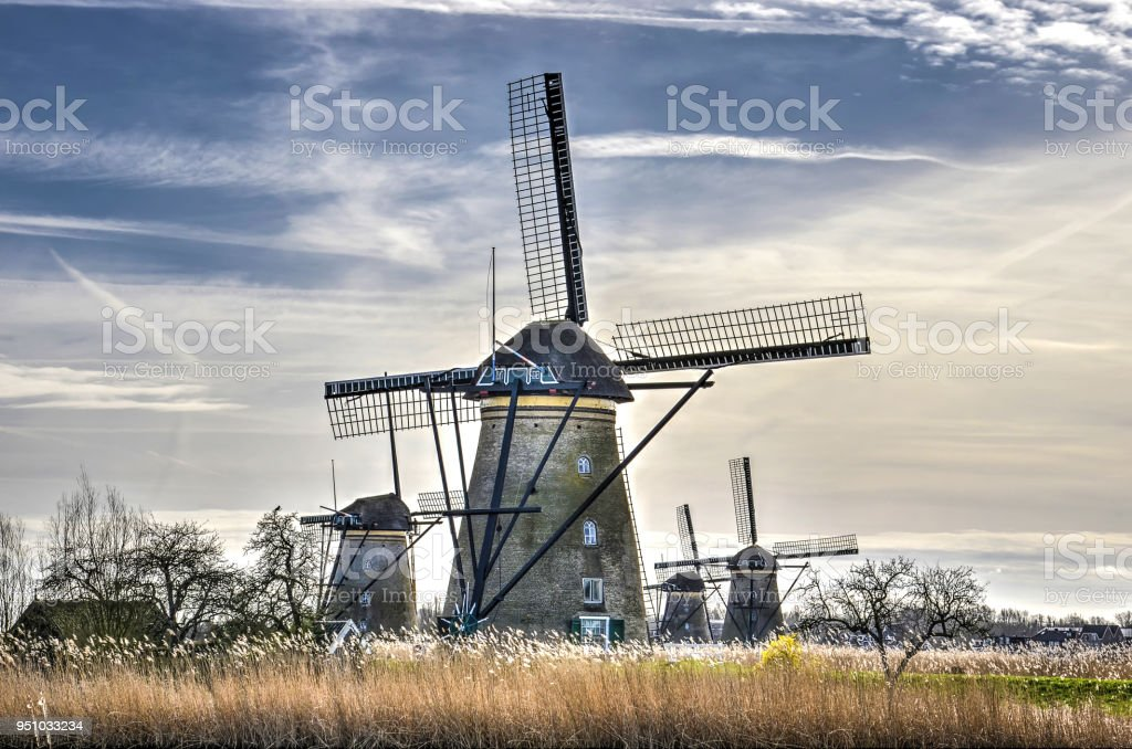 Windmills and reeds against a blue sky stock photo