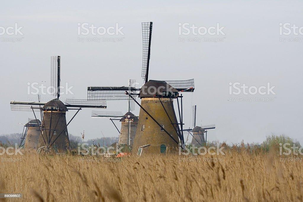 Windmühlen von Kinderdijk 3 Lizenzfreies stock-foto