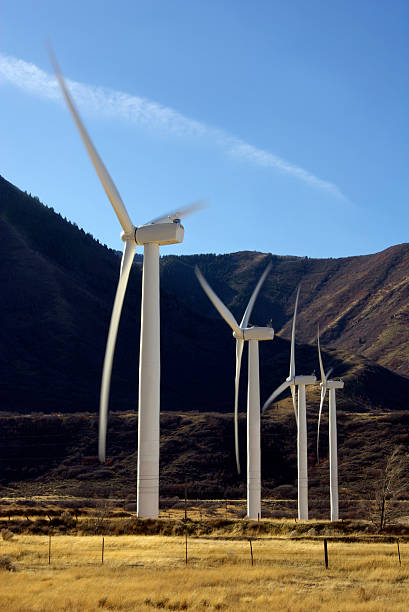 windmills in a row - mikefahl stock pictures, royalty-free photos & images