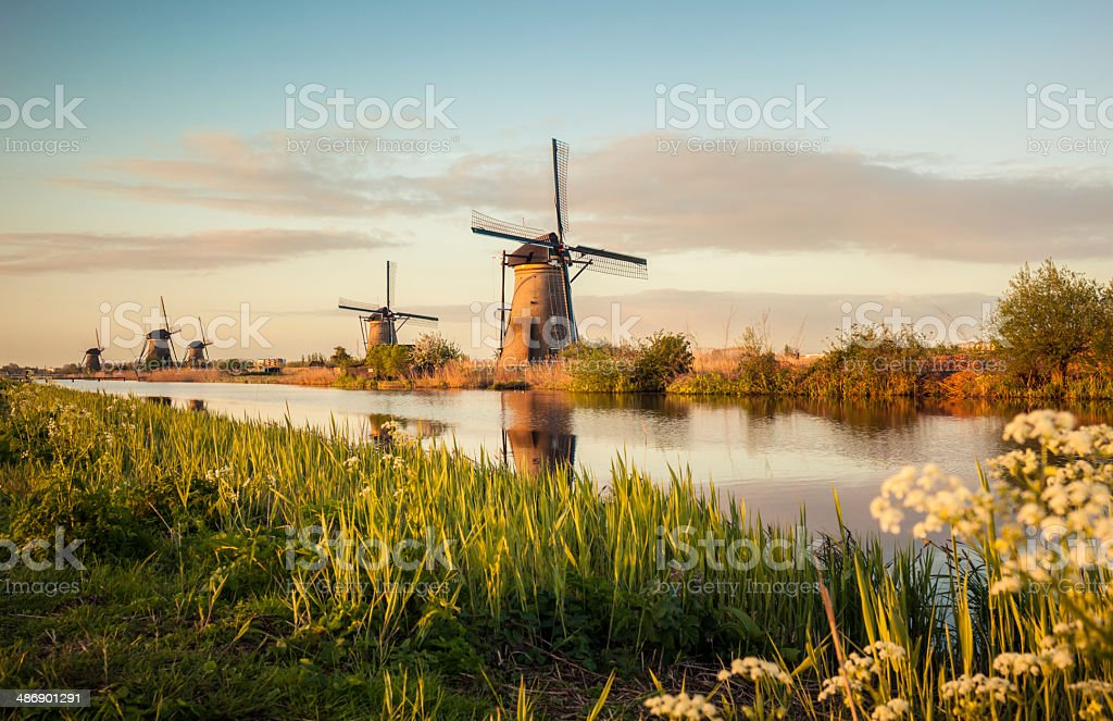 Windmills in Kinderdijk (Netherlands) stock photo