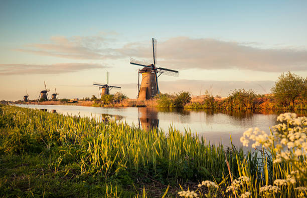 windmills in kinderdijk (netherlands) - netherlands stockfoto's en -beelden