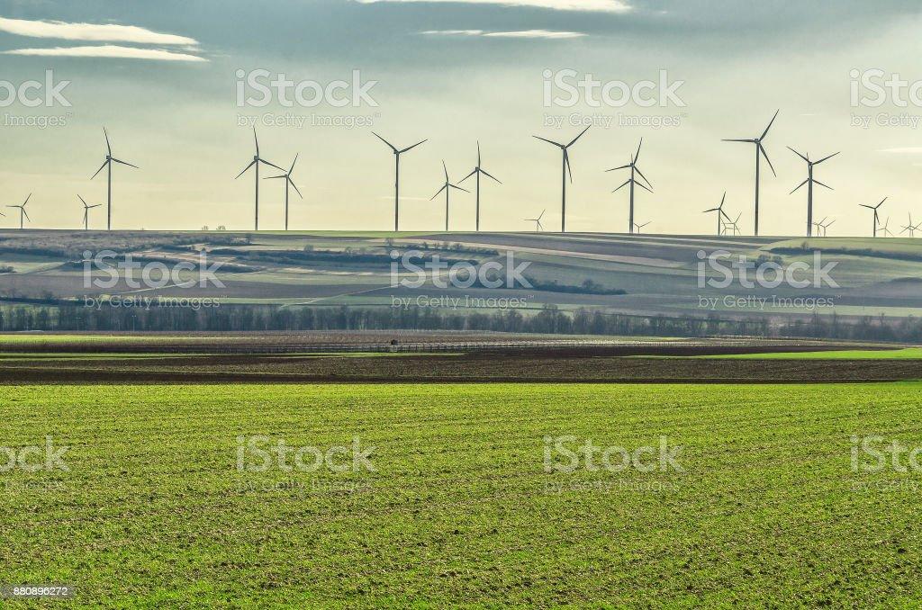 windmills in the field stock photo