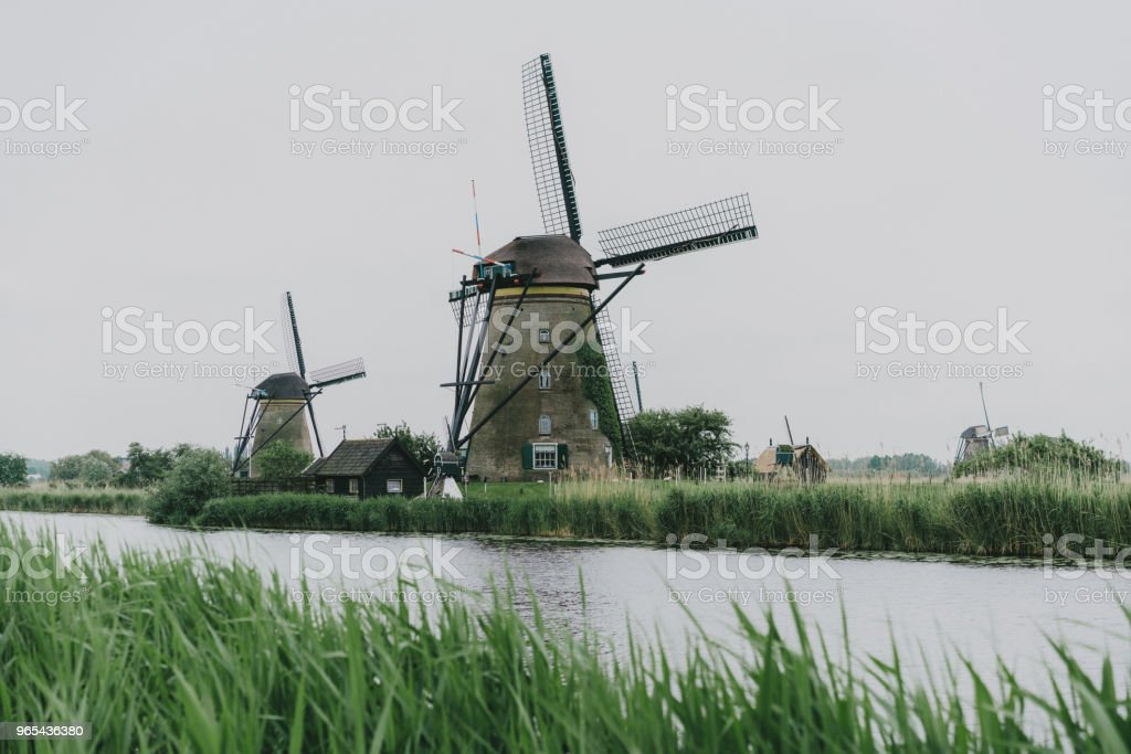 Windmills in the Netherlands royalty-free stock photo
