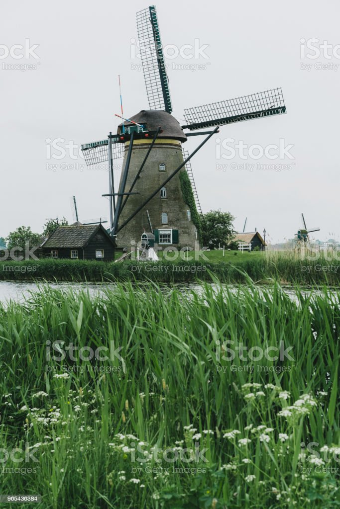 Windmills in the Netherlands zbiór zdjęć royalty-free