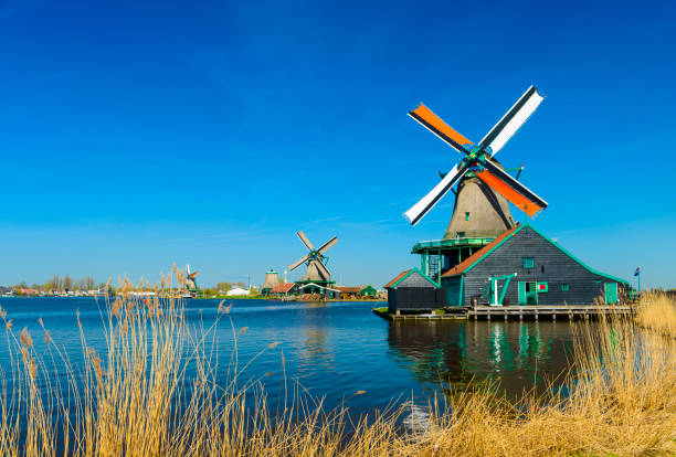 Windmills on the riverbank, Zaans Schans, North of Amsterdam, Holland stock photo