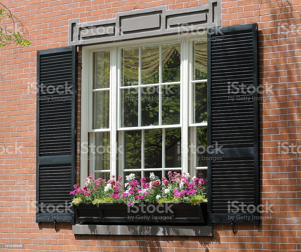 Window Box, Beacon Hill royalty-free stock photo