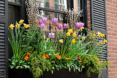 Window Box Flower Arrangement