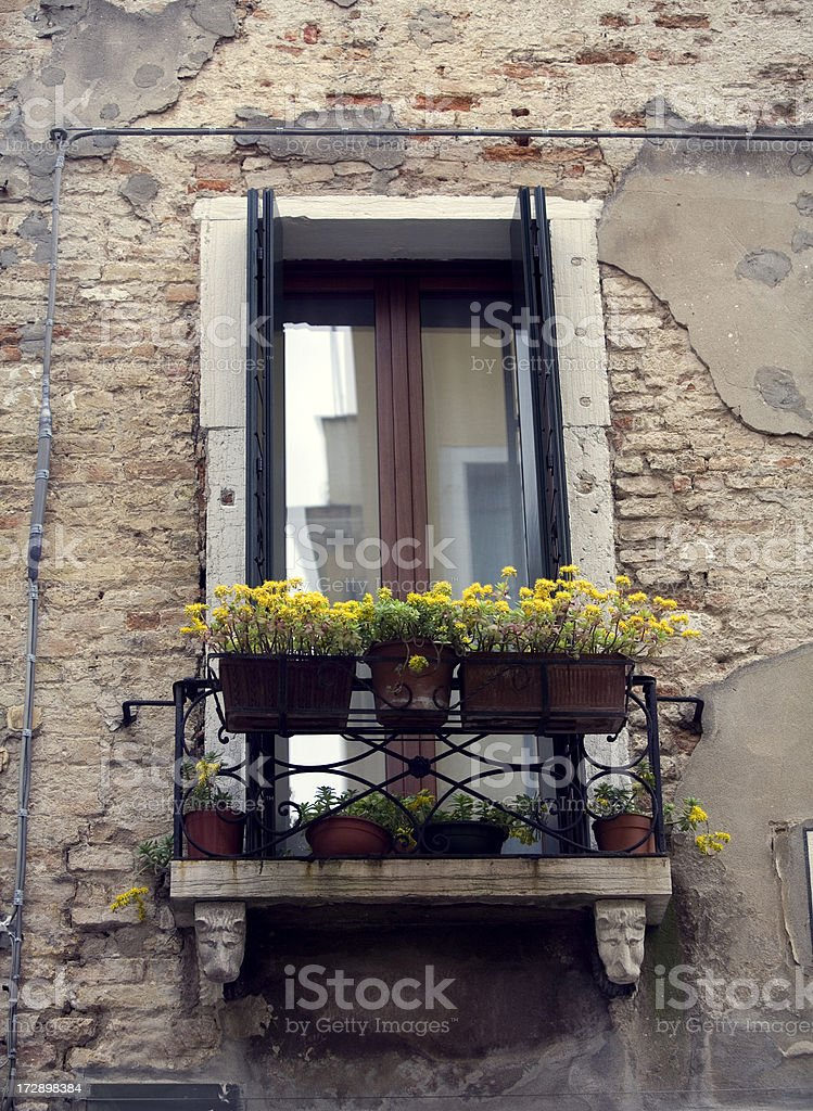 \'Window Boxes in Venice, Italy Residence\'