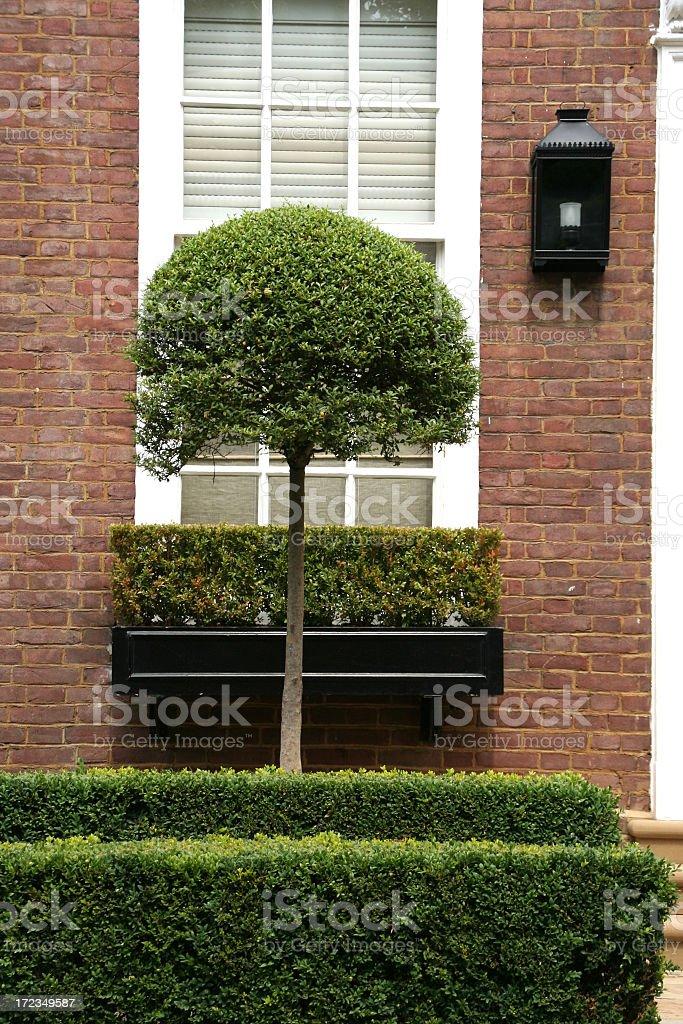 window box royalty-free stock photo