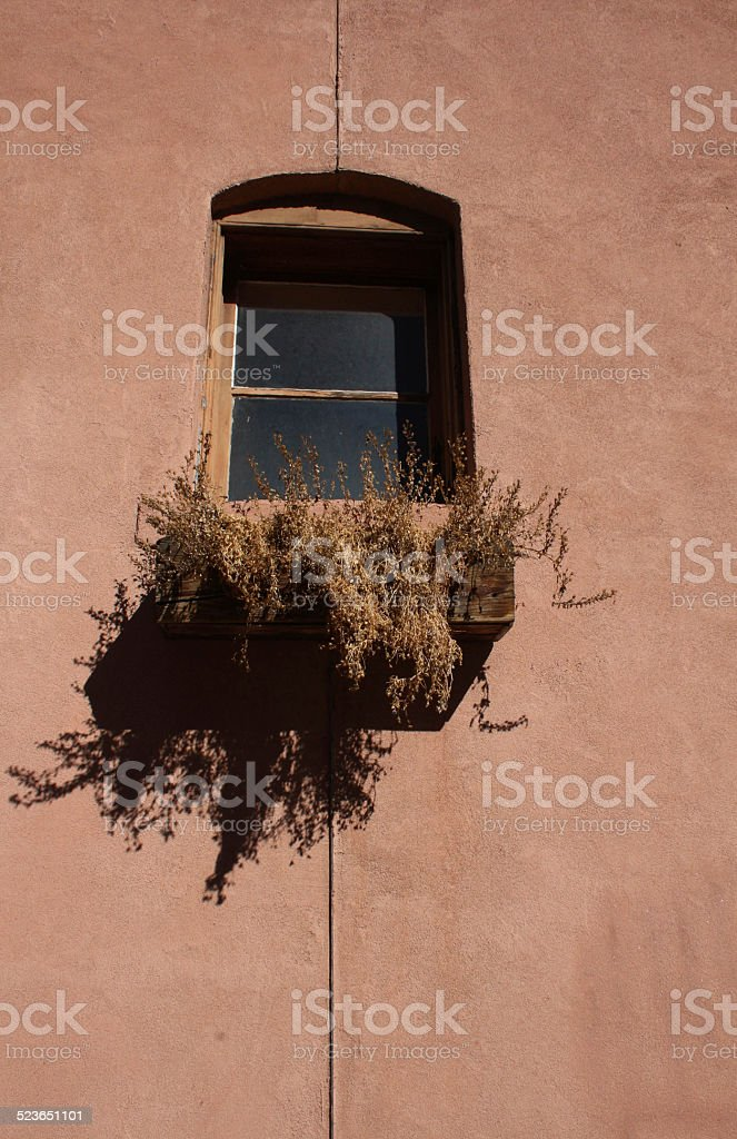 Window box with dead plants - centered stock photo
