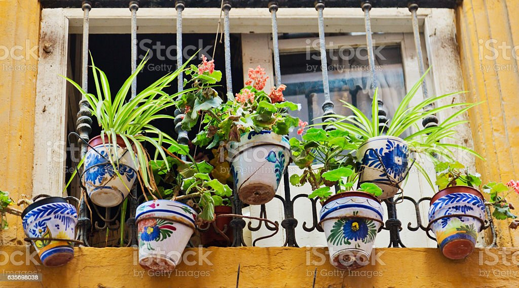 window decorated with pots flowers royalty-free stock photo
