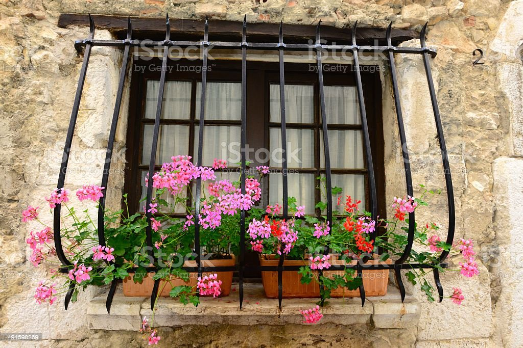 Window Flowers stock photo