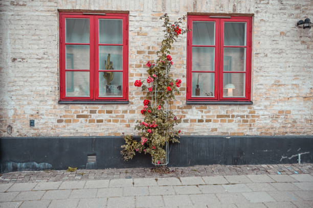 window frames in the wall - lund stock photos and pictures
