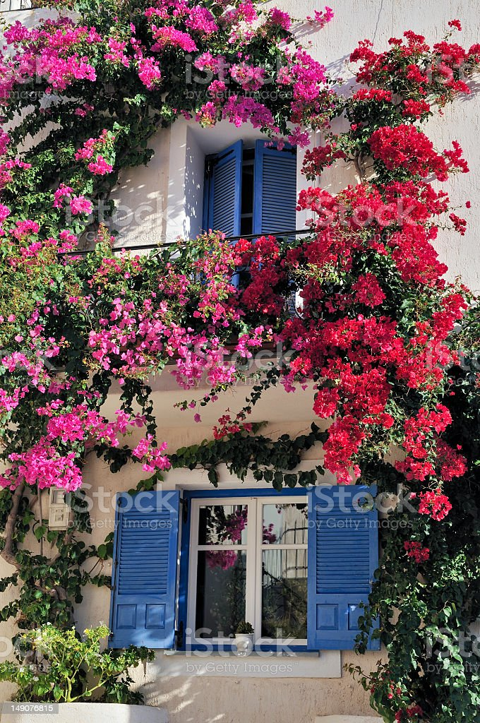Window frames with blue shutters stock photo