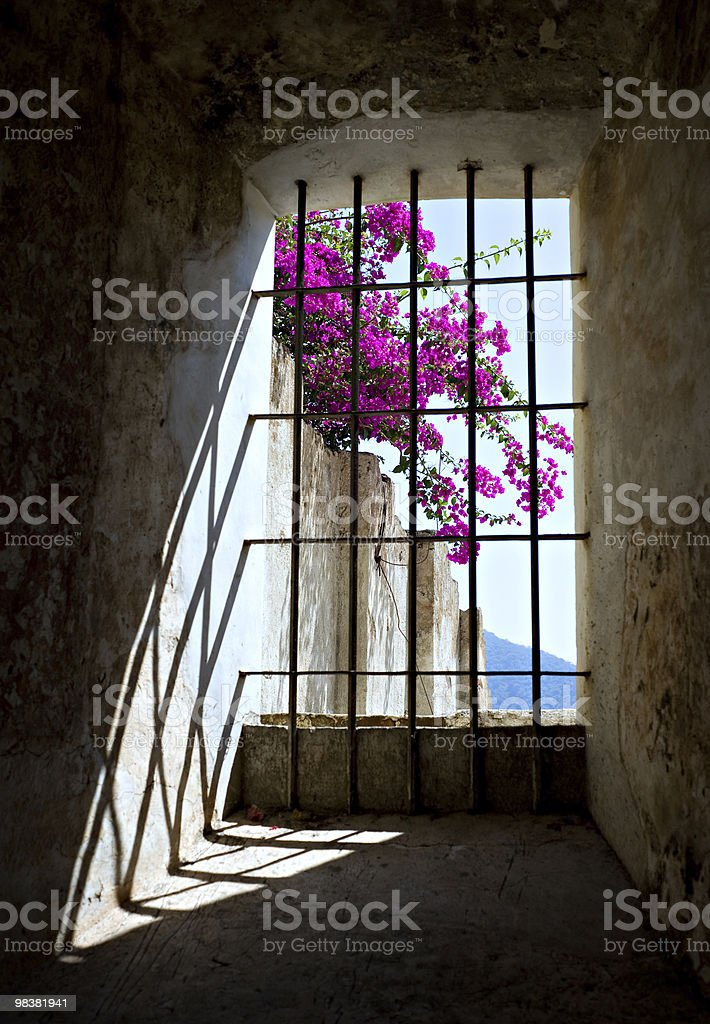 Window from History royalty-free stock photo