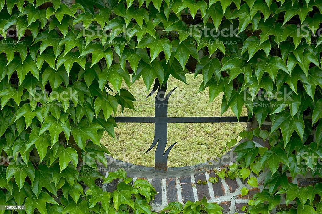 window in brick with ivy royalty-free stock photo